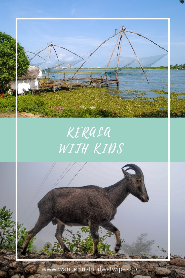 Kerala With Kids - India isn't for the faint hearted and this trip was no different. We faced challenges but also had some incredible experiences. Here's how to make the most of Kerala with kids.