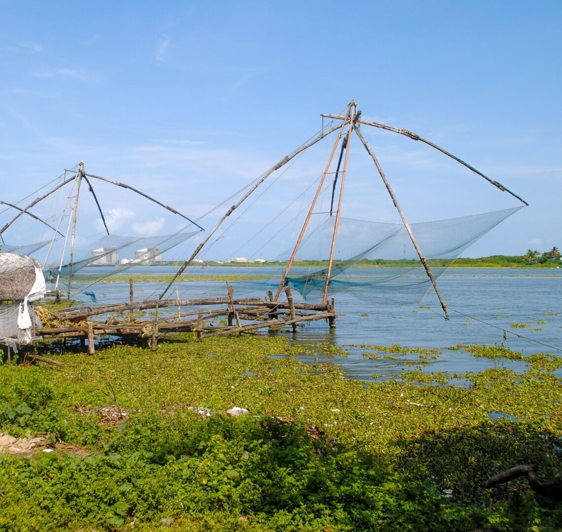 10 Day Kerala Itinerary - the enormous cantilevered fishing nets in Cochin / Kochi. There is green foliage in the foreground and the sea in the background with blue sky
