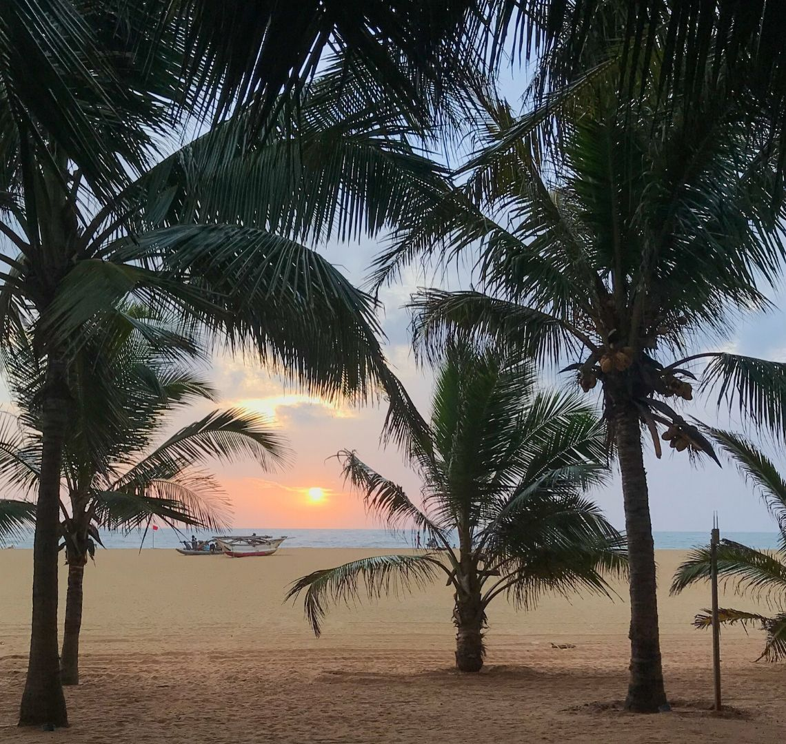 Palm trees on Negombo beach with a boat and a pastel pink sunset in the background