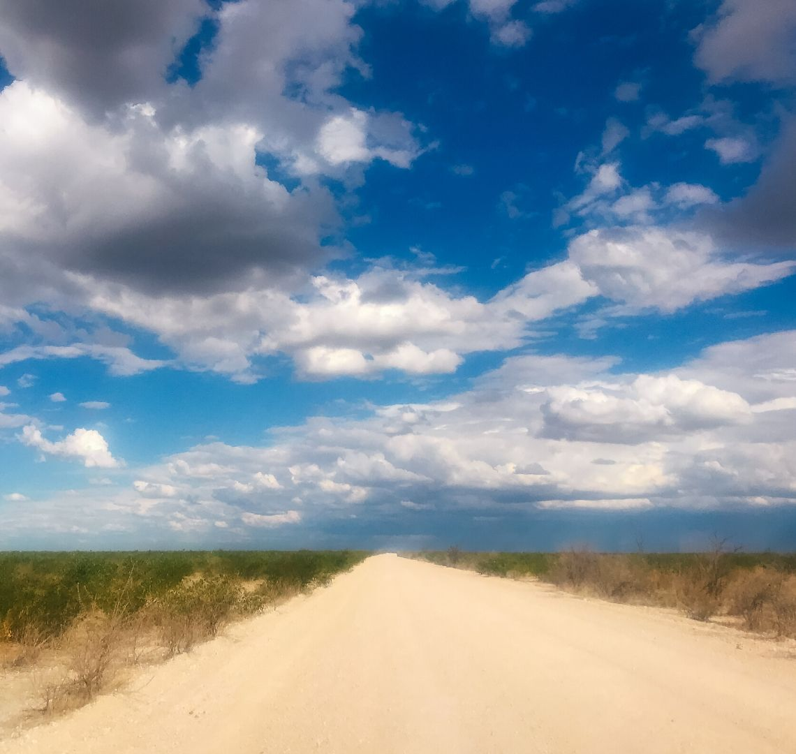 2 Week Namibia Itinerary - a long sandy road on the way to Etosha. The sand is almost white and there is green vegetation on each side. The sky is blue but there are lots of big white fluffy clouds too.