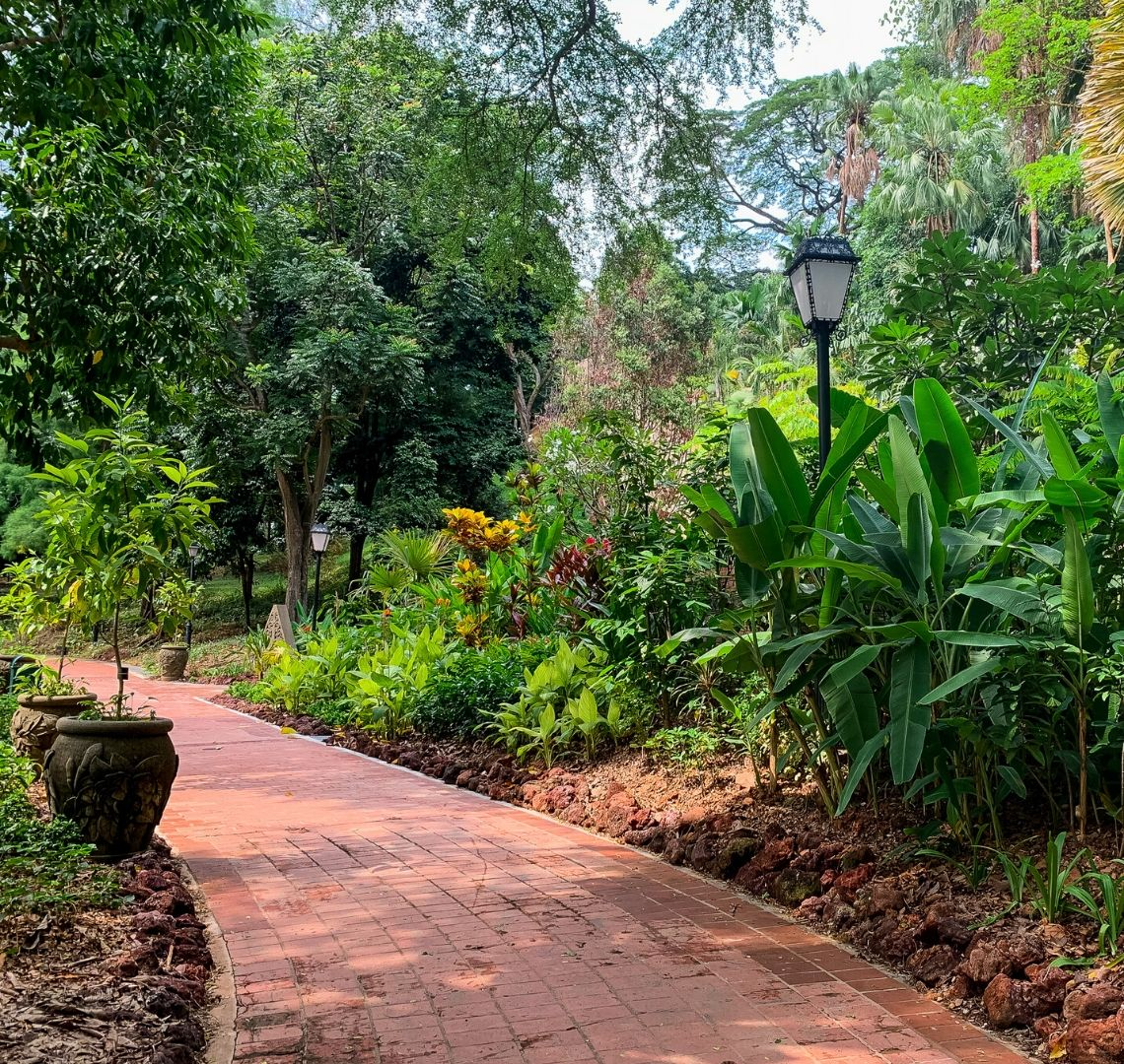 Things To Do In Fort Canning With Kids - a brick path curves from the middle round to teh left. On the right there are some green plants and flowers and a lamppost in the middle of the flower bed. On the right there are 2 plant pots with small trees in them.