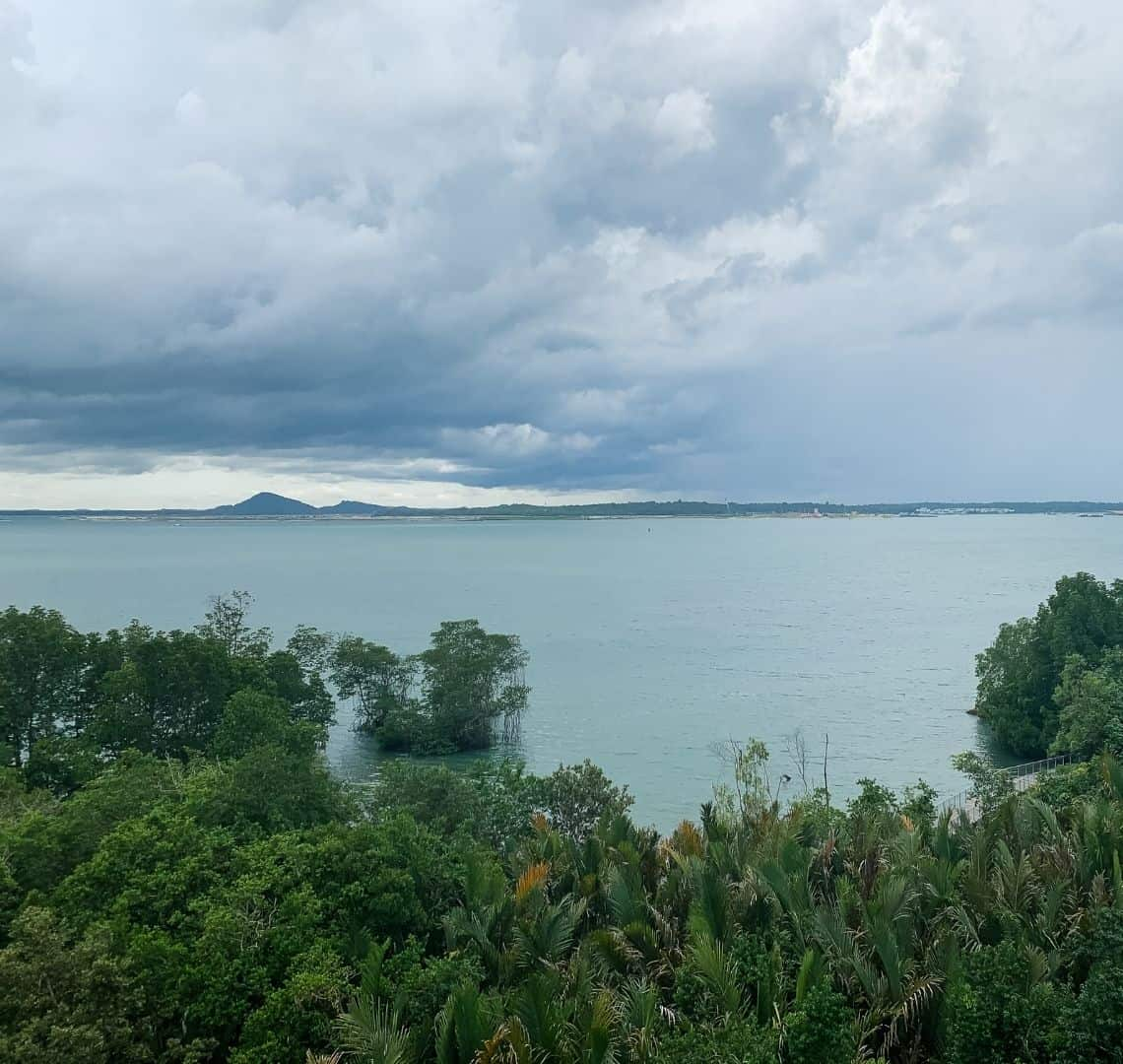 View from Jejawi Tower - the sky is dark with storms, moulds. On the horizon you can see the main island of Singapore but the land mass is quite dark. In front of it the sea is a blueish grey. In the foreground is a canopy of trees.