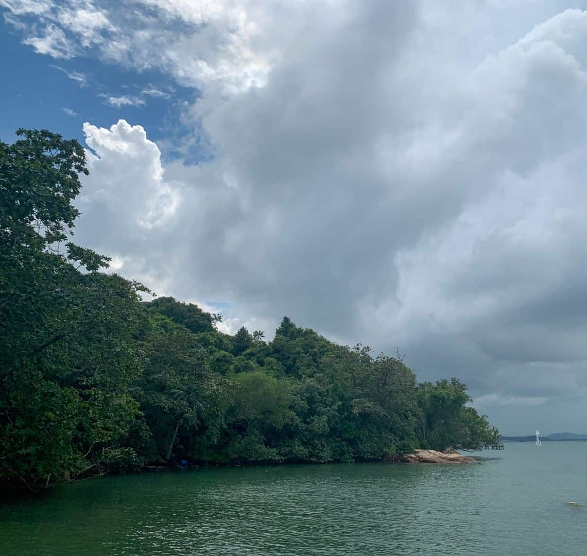 The sea is a dark green-ish turquoise. There are many trees sloping down to the water from the left and a small beach or outcrop of beige rocks at the end. The sky is very grey and cloudy except for some blue sky on the left.