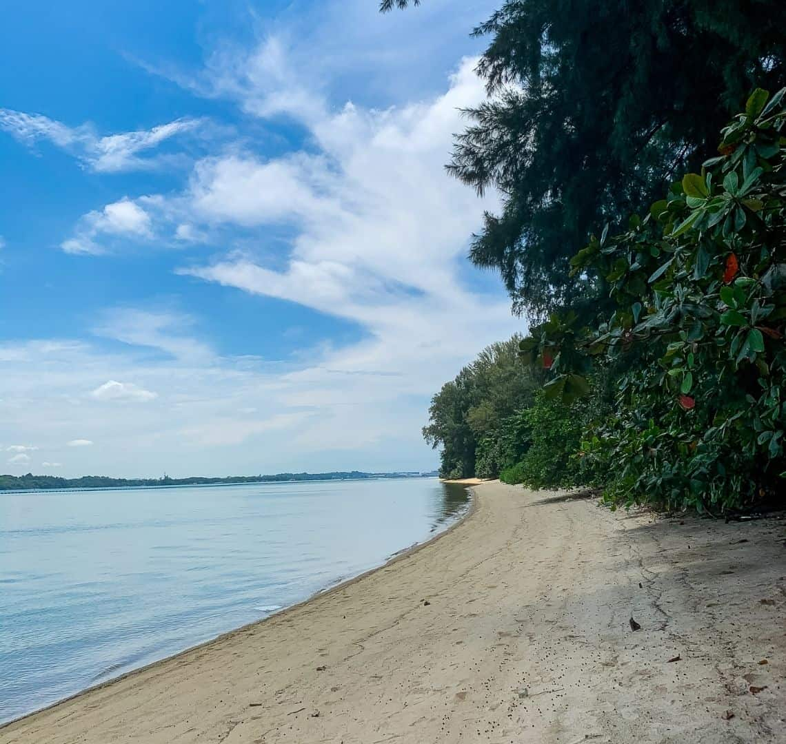 The yellow sand stretches from the bottom of the image, all the way up the right hand side and into the distance. There is green vegetation growing near the shoreline. On the left there is very still blue water, more vegetation (Pulau Ubin) on the horizon and a blue sky with lots of wispy white clouds
