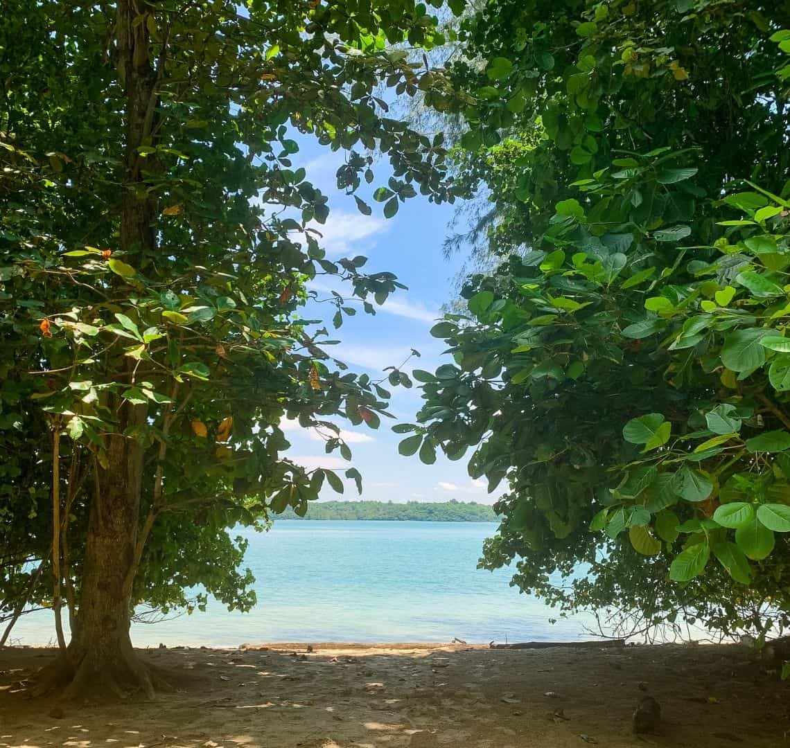 There are two large green trees framing the image - one on each side. At the bottom there is sand in the shade of the trees. Beyond the beach is turquoise water and beyond that the green trees of the next island (Pulau Ubin)