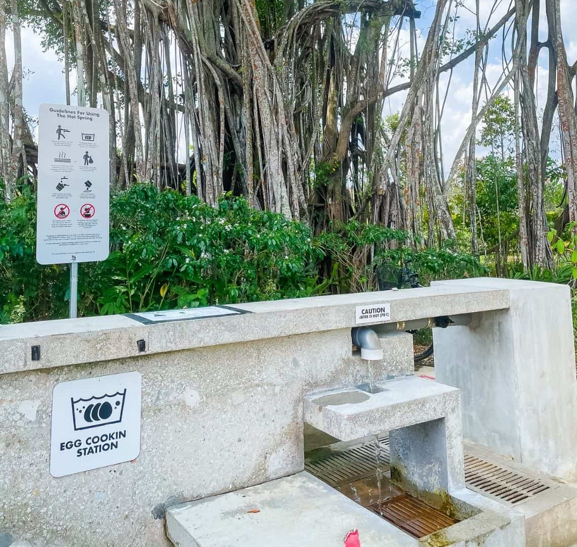The egg cooking station in Sembawang is a series of table top concrete slabs with taps for the hot water. There are several instructions on signs. Behind the wall there is a banyan tree and some green plants