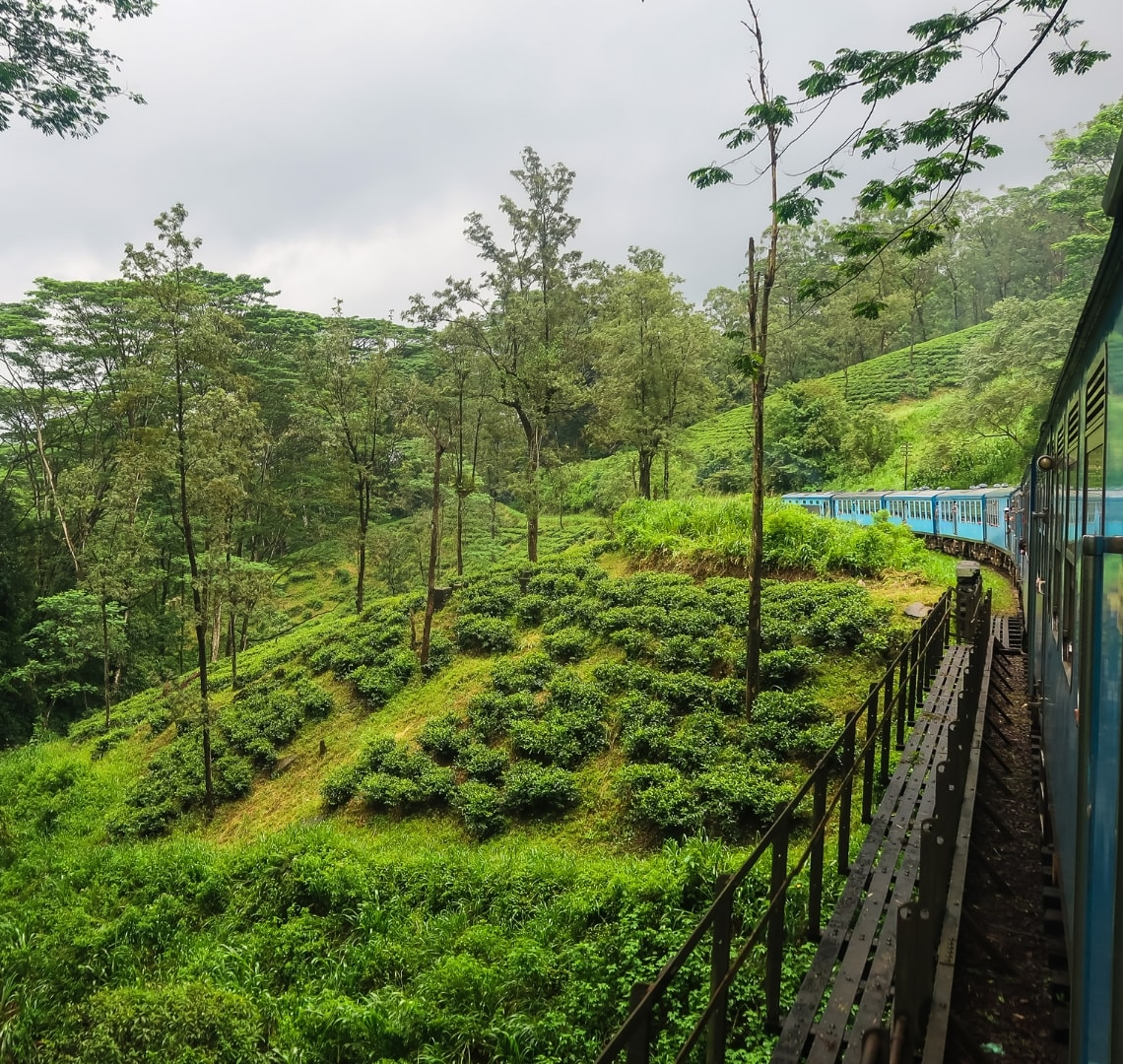 Best family holiday destinations - view from the blue train looking bat the back and all the green scenery on the Kandy to Ella stretch.