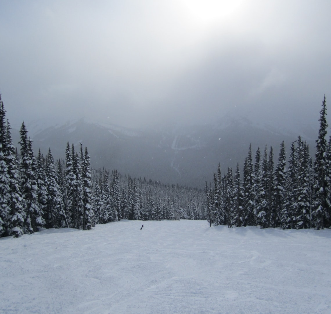Holiday Planning - Whistler Piste View