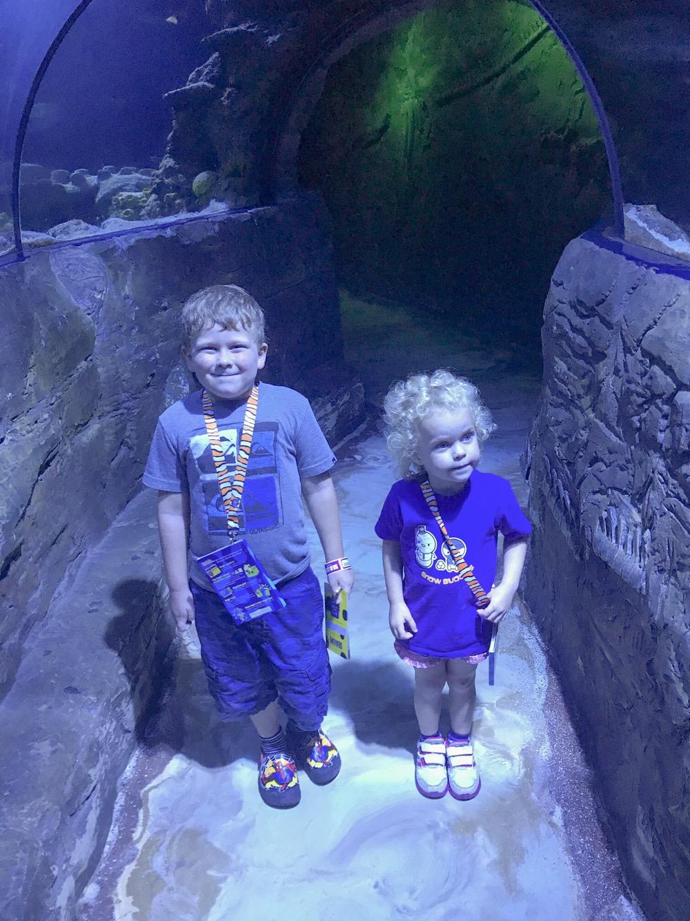 Undersea Explorers